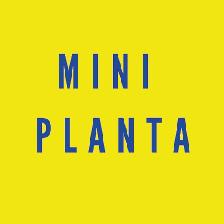 mini planta